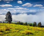 Triglav national park — Stock Photo