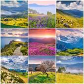 9 square summer landscapes — Fotografia Stock