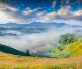 Carpathian mountain village. — Stock Photo