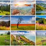 9  summer landscapes — Stock Photo #69226595