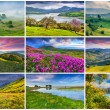 9  summer landscapes — Stock Photo #69227251