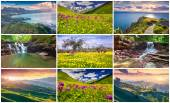 9 colorful summer landscapes. — Stockfoto