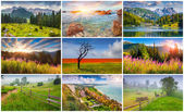9  summer landscapes — Stockfoto