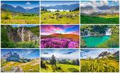 9  summer landscapes — Stock Photo