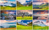 9 colorful summer landscapes — Stock Photo