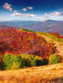 Autumn morning in the mountains — Stock Photo