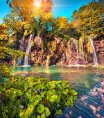Morning in the Plitvice Lakes National Park. — Stock Photo