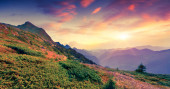 Summer sunset in the mountains — Stock Photo
