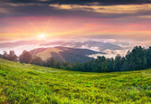 Sunset in the foggy mountains — Stock Photo