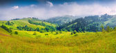 Panorama of the foggy mountain village. — Stock Photo