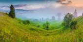 Foggy Carpathian mountains — Stock Photo