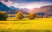 Parque Nacional de Triglav — Fotografia Stock