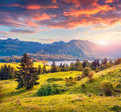 Colorful summer sunrise on Bohinj lake — Stock Photo