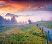 Colorful summer sunrise in foggy mountains. — Foto de Stock