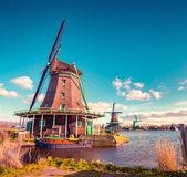 Authentic Zaandam mills in Zaanstad — Stock Photo