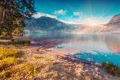 Foggy summer morning on the Bohinj lake — Stock Photo
