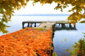 Autumn in the city park on the lake. — Stock Photo
