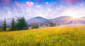 Morning in the foggy Carpathian mountains — Stock Photo