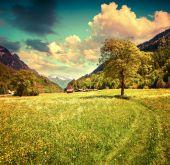 Alpine meadows near the village of Bondo. — Stock Photo