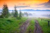 Old dirty road in foggy Carpathian mountains. — Stock Photo