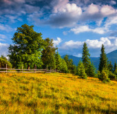 Morning in the Carpathian mountains — Stock Photo