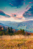 Východ slunce v Karpatských horách. — Stock fotografie