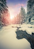 Dark river in the winter mountain forest. — Stock Photo