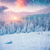 Colorful winter sunrise in the mountains. — Stock Photo