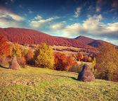 Landscape in the Carpathian mountain village. — Stock Photo