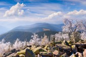 Forst frost in Carpathian mountains. — Stock Photo