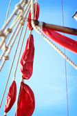 Scarlet Sails — Stock Photo