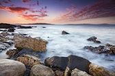 Seashore at sunset — Stock Photo