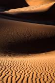 Sand dune in namibia — Stock Photo