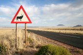 Road sign of an orxy in Namibia — Stock Photo