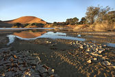 Landscape from Sossusvlei, Namibia — Stock Photo