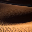 Dune patterns — Stock Photo #60944225