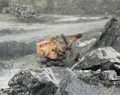 Mineral asbestos — Stockfoto