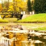 Autumn landscape in Pushkin, Russia. — Stock Photo #55902877