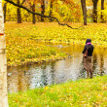 Autumn landscape in Pushkin, Russia. — Stock Photo #55902879
