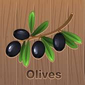 Black olives on a branch — Stock Vector
