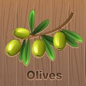 Green olives on a branch — Stock Vector