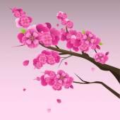 Japanese plum blossom 2 — Stock Vector
