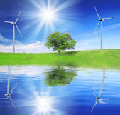 Field, tree and blue sky with wind turbines — Stock Photo