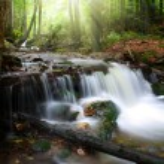 Waterfall in the national park Sumava — Stock Photo #55624903