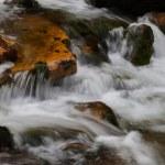 Beautiful waterfall in the national park Sumava — Stock Photo #55917885