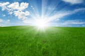 Green field and blue cloudy sky with sun — Stock Photo