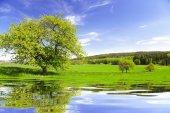 Summer landscape in Czech Republic — Stock Photo