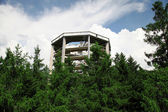 Treetop walkway, Czech Republic — Stock Photo