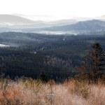 National park Sumava in Czech Republic — Stock Photo #56812607