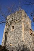 Castle Radyne,Pilsen, Czech Republic. — Stock Photo